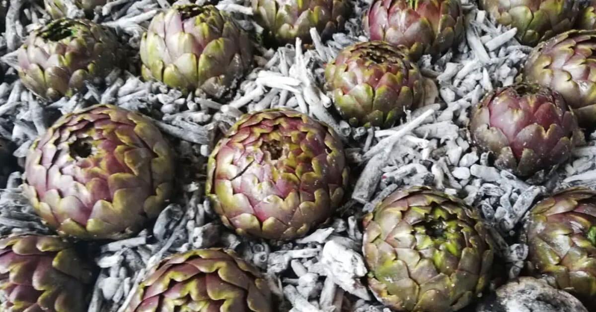 Carciofo alla matticella, il fiore da mangiare preferito dai romani